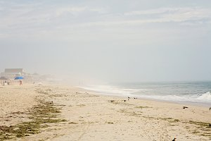 Outer Banks - Foggy Morning
