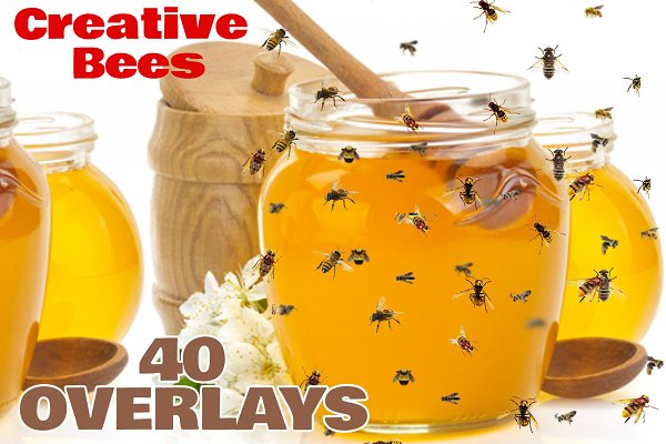 40 Flying Bees Photo Overlays