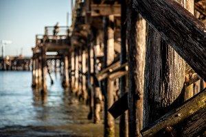 Oceanfront Pier, Shallow DOF