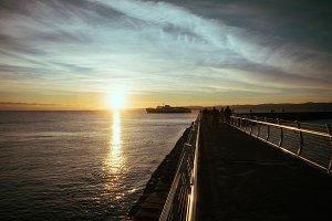 COHO at Sunset