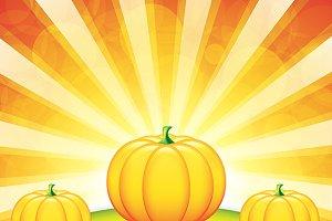 Autumn garden with pumpkins