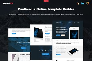 Panthera + Online Template Builder