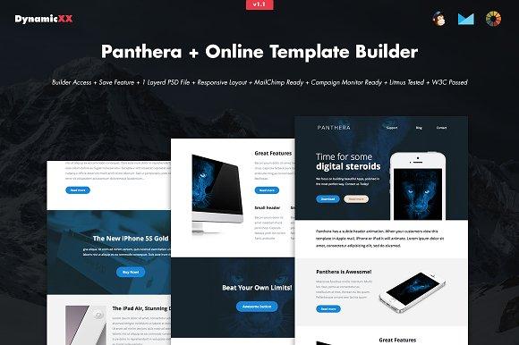 Panthera Online Template Builder Email Templates Creative Market - Mailchimp template builder