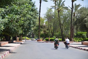 Scooting around Marrakesh