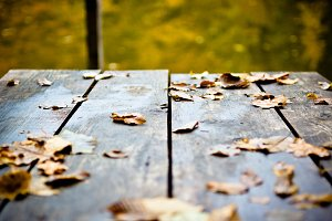 Brown Autumn Leaves in Wood Dock