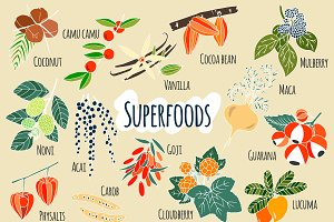 Hand-drawn superfoods.