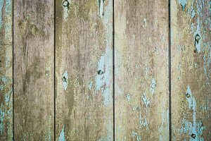Old wood background door