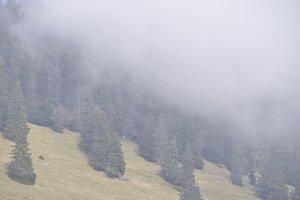 Brumes en montagne