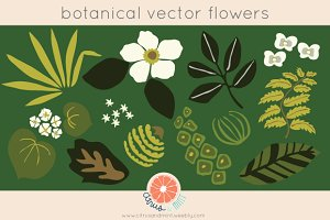 Vector Botanical Flowers Clip Art