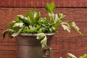 parsley in a mortar