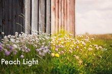 Peach Light - Lightroom Preset