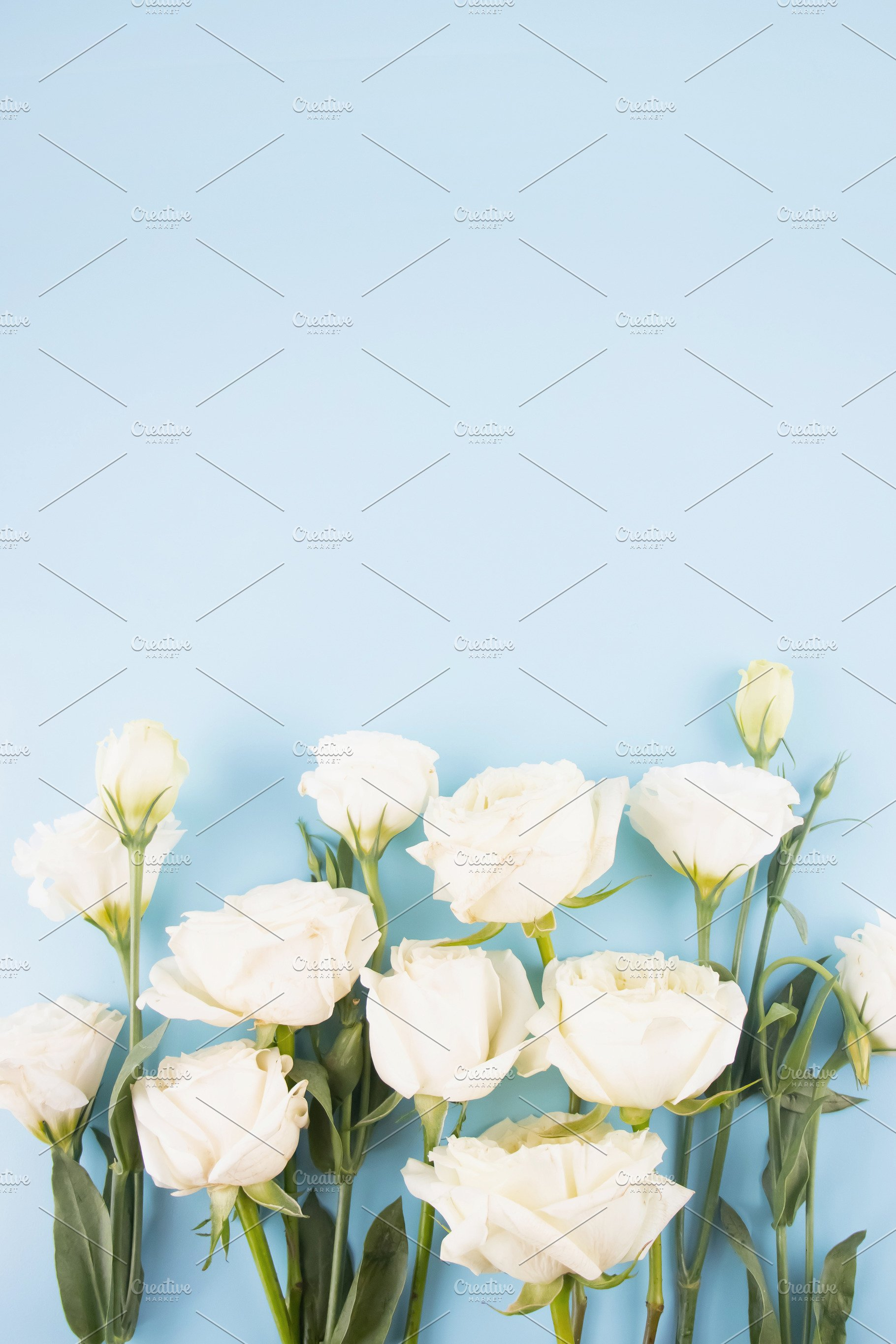 Vertical White Flowers Blue Backdrop High Quality Arts