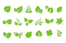 Green Leaves Design Elements