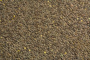 Lentils food background