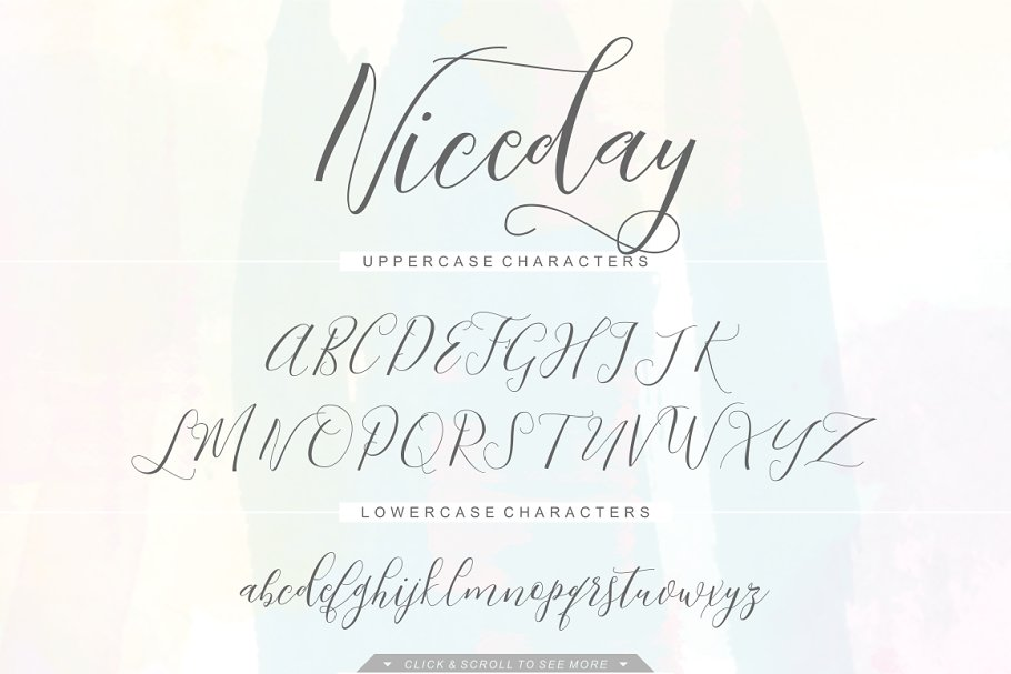 Niceday Script Font in Script Fonts - product preview 1