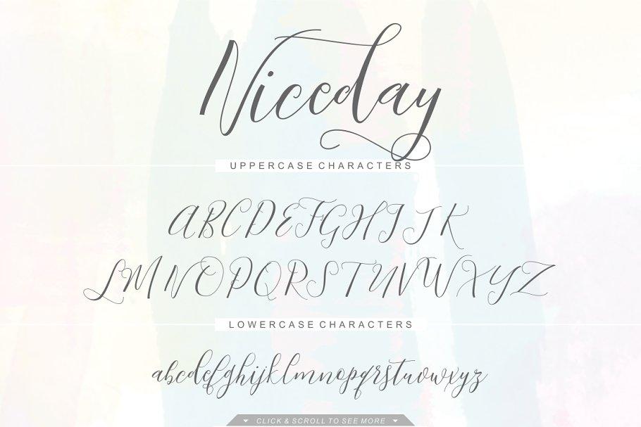 Niceday Script Font