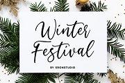 Winter Festival - Calligraphy Font