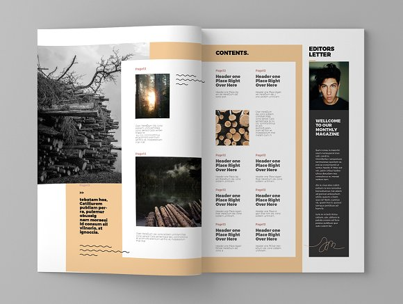 Timber - Magazine Template in Magazine Templates - product preview 2