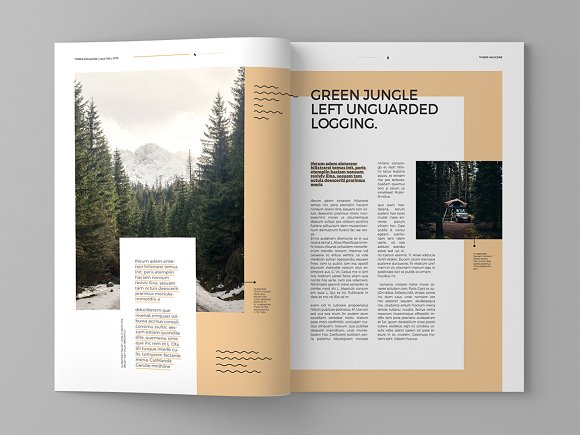 Timber - Magazine Template in Magazine Templates - product preview 3