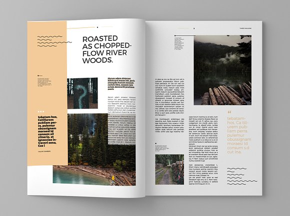 Timber - Magazine Template in Magazine Templates - product preview 4