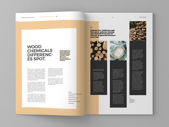 Timber - Magazine Template in Magazine Templates - product preview 5