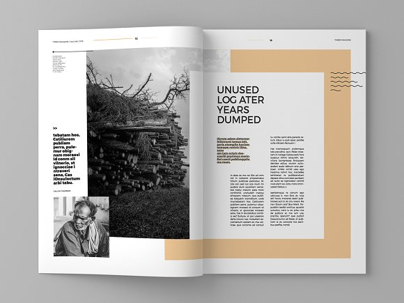 Timber - Magazine Template in Magazine Templates - product preview 7
