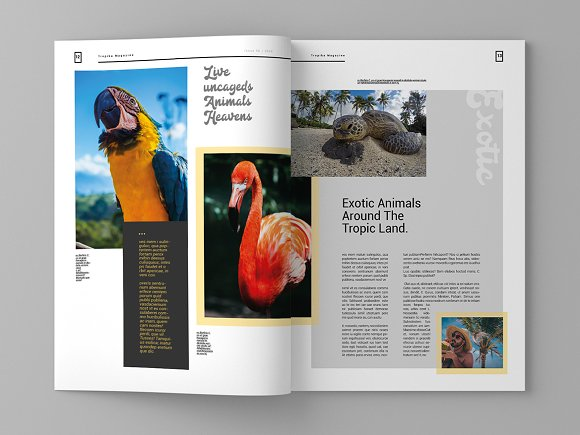Tropika - Magazine Template in Magazine Templates - product preview 7