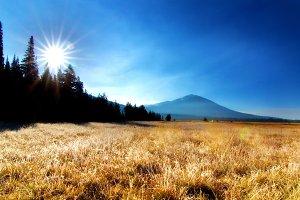 Field Landscape view