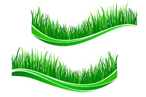 Green grass waves