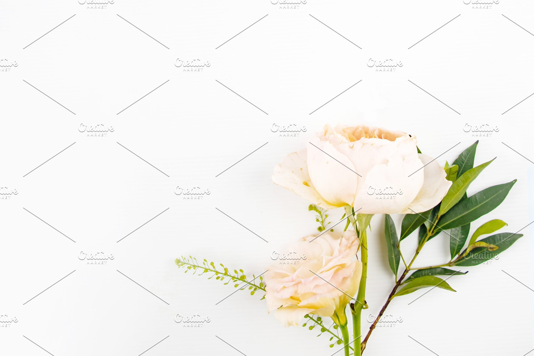 Rustic Floral White Background High Quality Arts Entertainment