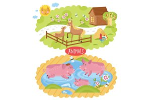 Animals located on farm.