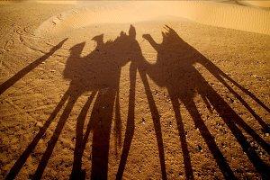 saharas desert