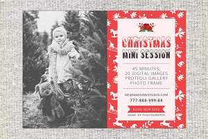 Christmas Holiday Mini Session Card