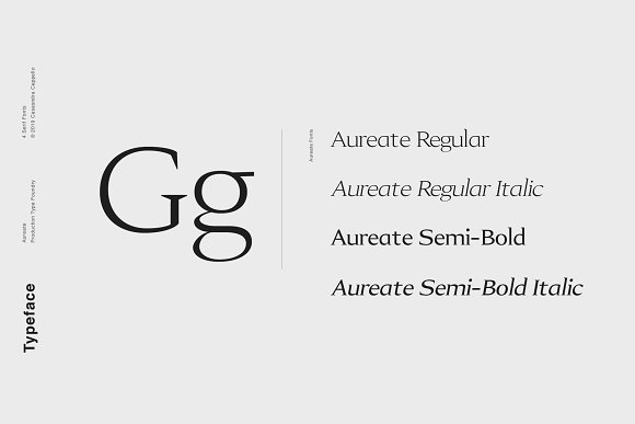 Aureate - A Sophisticated Serif in Serif Fonts - product preview 1