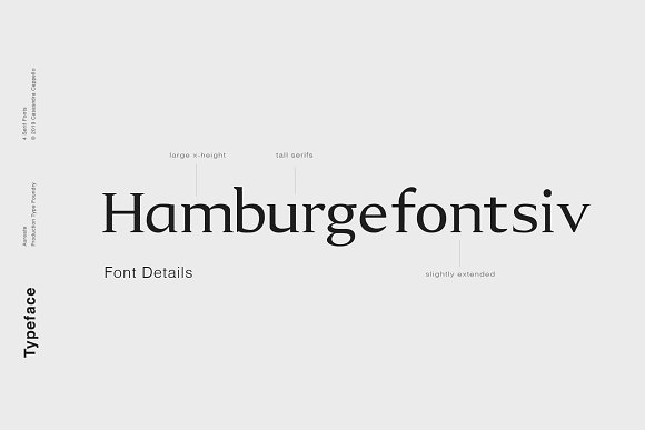 Aureate - A Sophisticated Serif in Serif Fonts - product preview 2
