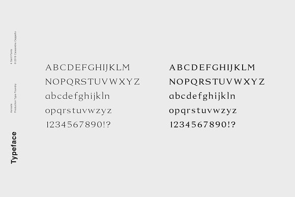 Aureate - A Sophisticated Serif in Serif Fonts - product preview 4