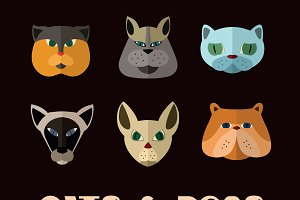 Cats and dogs icon set.
