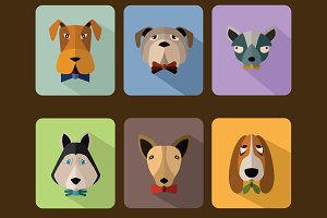 Dogs avatar icon set