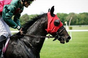 Horse riding, parkour