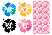 Hibiscus flower and patterns