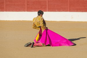 Spanish bullfighter awaiting bull
