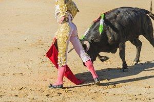 Spanish torero