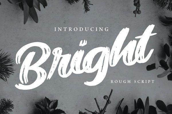 Best Bright | Modern Rough Script Font Vector