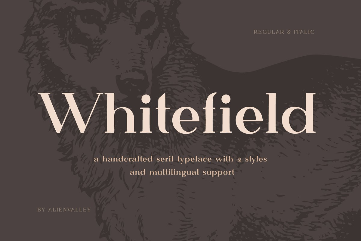 Whitefield - Handcrafted Serif in Serif Fonts - product preview 8
