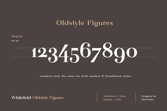 Whitefield - Handcrafted Serif in Serif Fonts - product preview 4