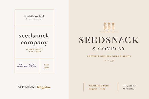 Whitefield - Handcrafted Serif in Serif Fonts - product preview 6