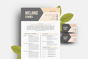 2 p resume pack for Word