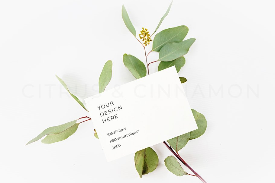RSVP, Thank You Card, Logo Mockup