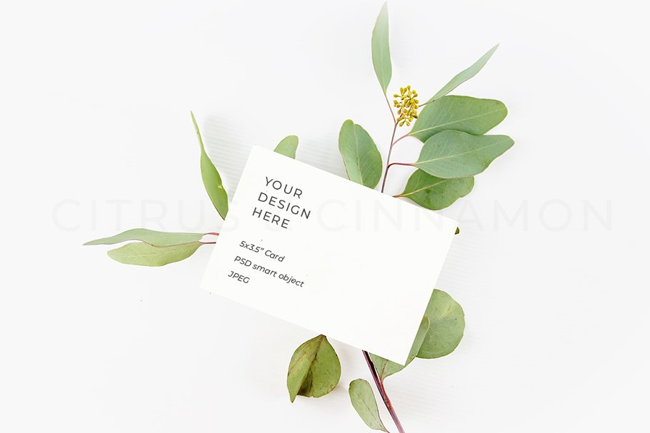 RSVP, Business Card, Logo Mockup