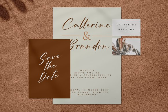 Amellian Gressida in Display Fonts - product preview 10